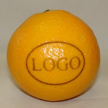 LOGO-Orange, klein