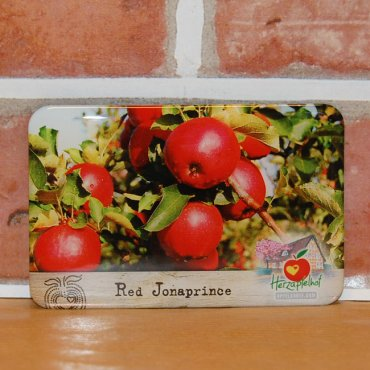 Magnet (Flexi) Red Jonaprince Apfel
