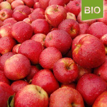 Bio-Äpfel Red Jonaprince 5kg