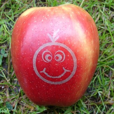 "roter mini Laser-Apfel mit Smilie ""Fred"""