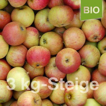 Bio-Äpfel 3kg-Steige Cox Orange